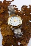 Dama zegarek Zdjęcia Royalty Free
