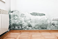Damage caused by damp on a wall in modern house Stock Images