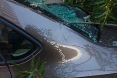 Damage close up and broken glass. Large diver fell on the car during a hurricane. Accident and property insurance stock photo