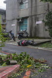 Damage done by the Typhoon Soulik to the Taipei city Stock Photo