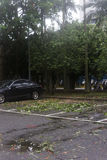 Damage done by the Typhoon Soulik to the Taipei city Royalty Free Stock Photo