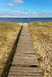 Damage path to the sea. Stock Image