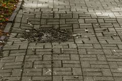 Damaged asphalt road with potholes, caused by freeze-thaw cycles in winter. Bad road. Broken pavements sidewalks on sidewalk. pave. Ment with paving slabs with royalty free stock photo