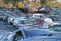 Damaged cars lined up. Damaged cars in masse at the scrap yard in Halden Royalty Free Stock Image