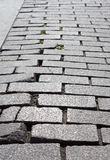 Damaged cobblestone pavement Stock Photos