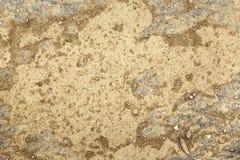 Damaged concrete background Royalty Free Stock Photo