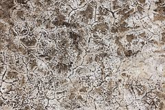 Damaged concrete wall Royalty Free Stock Photography