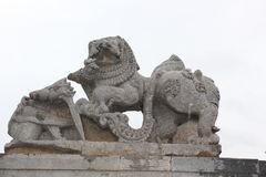 Damaged or Destroyed Emblem of Hoysala Empire at Hoysaleswara Temple Royalty Free Stock Images