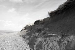 Damaged dunes after the big storm Royalty Free Stock Photo