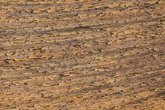 Damaged and exfoliated chipping paint along wood fibers on a plank. Detail of chipping Oil paint texture exfoliating along the wooden fibers of a plank royalty free stock images