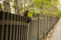 Damaged fence Royalty Free Stock Images