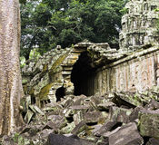 Damaged gallery at Ta Nei, Siem Reap, Cambodia Royalty Free Stock Photos