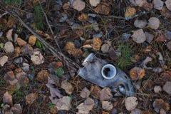 Damaged gas-mask Royalty Free Stock Photo