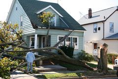 Damaged House from Tree