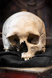 Damaged human skull and old book Royalty Free Stock Photo
