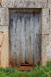 Damaged old wooden door overgrown with grass Royalty Free Stock Image