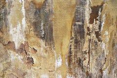 Damaged Plaster Stock Photo