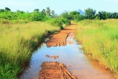 Damaged roads. royalty free stock images