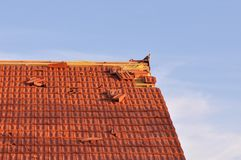 Damaged roof. Damaged slope roof from tiles after storm with pigeon Royalty Free Stock Images