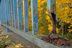 Rusting fence. Damaged rusting fence with blue coating Royalty Free Stock Photography