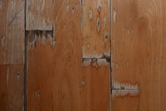 Damaged wood floor. It is damaged by water Stock Images