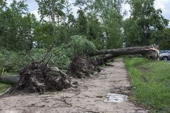 Damages after the storm and a hurricane Stock Photography