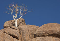 Damaraland in Namibia Stock Photo