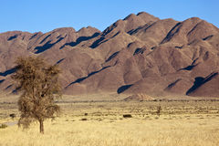 Damaraland in Namibia Royalty Free Stock Photo