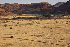 Damaraland in Namibia Stock Photography