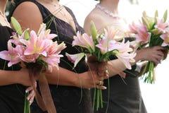 Damas de honra Fotografia de Stock