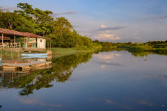 Damas Island mangrove area - Costa Rica Royalty Free Stock Image