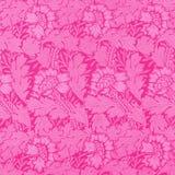 Damasco cor-de-rosa Imagem de Stock Royalty Free