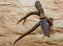 Damascus fixed blade collectors knife Royalty Free Stock Photo