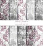 Damask patterns set collection Vector. Classic ornament various colors with abstract background textures. Vintage decor. Vintage Damask patterns set collection Royalty Free Stock Images