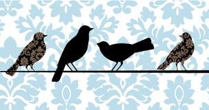 Damast-Vögel blau lizenzfreie abbildung