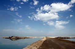 Damba at the Dead Sea Stock Image