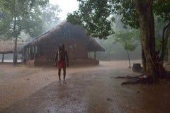Dambana,斯里兰卡, 2015年11月12日:有轴的土产战士在雨 库存照片