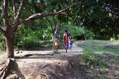 Dambana, Sri Lanka, 12 November, 2015: Het inheemse strijders lopen Royalty-vrije Stock Foto