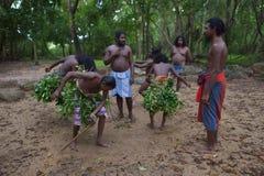 Dambana, Sri Lanka, 12 November, 2015: Inheemse strijdersdans Stock Afbeeldingen