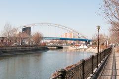 Dambovita河蚂蚁新的basarab桥梁 库存图片