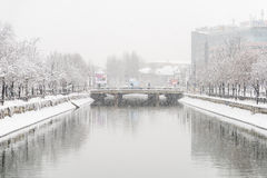 Dambovita River During Heavy Snowfall In Winter Royalty Free Stock Image
