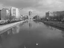 Dambovita river Stock Image