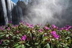 Dambri waterfall in Vietnam Stock Image