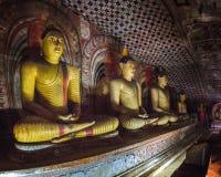 Dambulla,斯里兰卡金黄寺庙 免版税库存照片