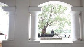 DAMBULLA,斯里兰卡- 2014年2月:跟踪寺庙拱道射击Dambulla金黄寺庙的, S的一个世界遗产名录站点 股票视频