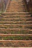 Dambulla nella provincia centrale Fotografia Stock Libera da Diritti