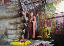 Dambulla Sri Lanka, Asien Arkivfoton