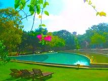 Dambulla, Sri Lanka - 1 de mayo de 2009: Piscina del hotel Chaya Village Hotel 4, Sri Lanka Fotos de archivo libres de regalías