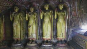 DAMBULLA, SRI LANKA - FEBRUAR 2014: Die Ansicht der Stellung von Buddhas am goldenen Tempel von Dambulla Der goldene Tempel von D stock video