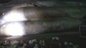 DAMBULLA, SRI LANKA - FEBRUAR 2014: Pan schoss von schlafendem Buddha auf den goldenen Tempel von Dambulla, eine Welterbestätte i stock video footage